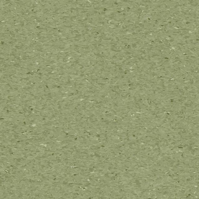 18-grant-fern-405